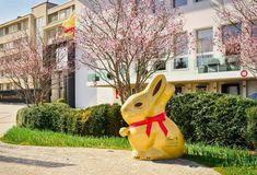Lindt Bunny Contest Swiss Chocolate, Switzerland, Bunny, Board, Blog, Cute Bunny, Blogging, Rabbit, Planks