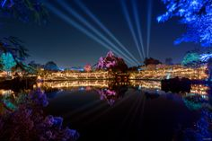 https://flic.kr/p/RYhqjo | Reflections Of Everest | Today's photo tour sends us to  the Animal Kingdom for a shot of Everest at night. Due to the hours of the park closing, I was never able to get any night shots until this last trip. I found a perfect area located by the Flame Tree BBQ that was pretty awesome. I never knew that area of the park even existed! Have you ever taken any pics from here before? Have a magical day!  Visit Disney Photo Tour on Facebook and Instagram