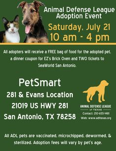 Pet Adoption Event San Antonio Tx Events Pinterest
