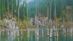 Kaindy lake Kazakhstan, Mountains, Nature, Travel, Naturaleza, Viajes, Trips, Nature Illustration, Outdoors
