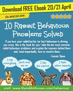 Free Ebook 10 Rabbit Behaviour Problems Solved