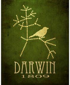 """""""La esencia del instinto es que es seguido independientemente de la razón."""" Charles Darwin"""