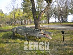 Crocodile( Dinosaurs, Dinosaur Costumes, Dinosaur Rides, Fiberglass Dinosaurs, Dinosaur Skeletons And Fossils Supplier Crocodile Animal, Dinosaur Skeleton, Dinosaur Costume, Fossils, Costumes, Animals, Animales, Dress Up Clothes, Animaux