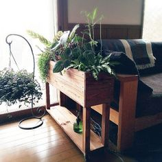 Plants soften a home. Wooden Planters, Indoor Planters, Planter Boxes, Indoor Garden, House Plants Decor, Plant Decor, Minimaliste Tiny House, Diy Plant Stand, Garden In The Woods