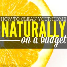 How to Clean Your Home Naturally on a Budget SQ
