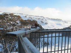 Oldina Ski Club Lodge Perisher = 14 beds (twin rooms all with en-suites), cooked breakfast & 3 course dinner cooked by our Winter Lodge Manager.  Non-Members welcome. Visit our web site:  www.oldinaperisher.com.au    To book a bed EMAIL bookings@oldinaperisher.com.au or  Ph 02 - 9481 9221 Why not join our club?   Membership information and form  at:  www.oldinaperisher.com.au/members.html Winter Lodge, Ski Club, Ph, Skiing, Beds, Twin, Rooms, Mountains, Dinner