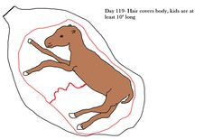 Goat pregnancy fetal growth