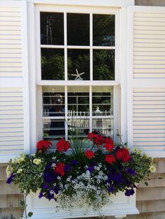 This summer's window box