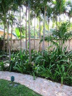 Photo by Oscar de la Renta of his house and tropical gardens in Punta Cana.jpg