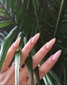Nude nails become the most popular fashion of recent times. Because nude nails look clean, pure and chic. Mani Pedi, Manicure And Pedicure, Nude Nails, Acrylic Nails, Neutral Nails, Matte Nails, Black Nails, Acrylics, Hair And Nails