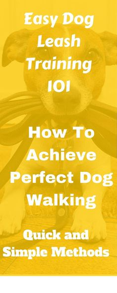 Easy Dog Leash Training Stop your dog from pulling on the leash. Experience a nice, smooth dog walk! Easy, solid leash training methods.