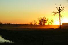 Dusty evening on the ranch Springtown, AR