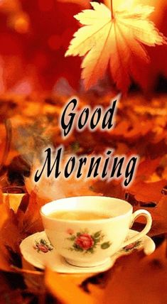 Good Morning Gif, Good Morning Everyone, Morning Wish, Good Morning Quotes, Blessed Sunday, Gifs, Images For Good Night, Gud Morning Images, Be Nice