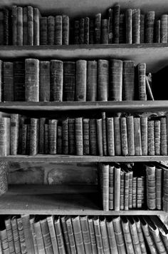 biblio n hampshire tumblr