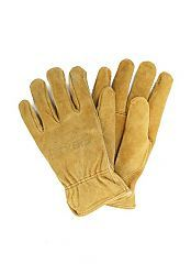 """Get ready for a whole new season with a set of """"picking gloves""""! Visit our store at canadianpickers.com/shop"""