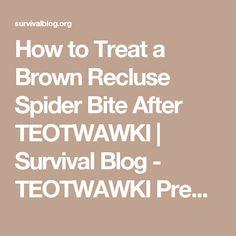 How to Treat a Brown Recluse Spider Bite After TEOTWAWKI | Survival Blog - TEOTWAWKI Preparedness