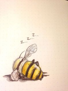 "schinkennudeln: ""Also my last drawing . schinkennudeln: ""Also my last drawing of 2016 was a bee taking a nap "" Bee Art, Art Et Illustration, Bumble Bee Illustration, Animal Illustrations, Inspiration Art, Creative Inspiration, Take A Nap, Bees Knees, Oeuvre D'art"
