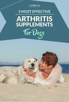 Top 5 Best Dog Arthritis Supplements for Dogs' Joint & Hip Care (2017). Every dog's joints take a beating over the years. Dogs love to run, jump and play. All of this activity puts a lot of stress on their bones and joints, especially as they get older. The best dog arthritis supplements will aid in hip and joint health, and help to rebuild damage done by strenuous activity. #dog #joints #arthritis #health #dogs #supplements #best #top #reviews