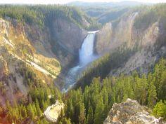 grand canyon....of yellowstone.