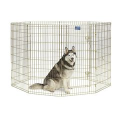 """Portable 24""""x48"""" Foldable Metal Exercise Pet Playpen Dog Fence Cage + Door Panel #MidWestHomesforPets"""
