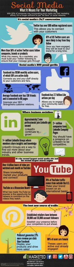 Social media statistics for Facebook, Twitter, LinkedIn, YouTube & Pinterest #infographic