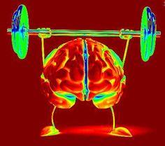 Hoe houd je je geheugen / hersenen gezond?