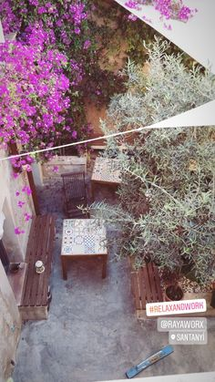 View from above into the courtyard of Rayaworx Coworking, where you can chill or work 💙 Blick von oben in den Patio des Coworking Space in Santanyí, in dem gechillt oder gearbeitet werden kann 🌸 Balearic Islands, Coworking Space, Mediterranean Sea, Beautiful Islands, Where To Go, Travel Inspiration, Relax, Patio, Plants