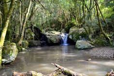 Madonna And Child waterfall pool, Hogsback, South Africa photographer Jan Widmann Dream Vacation Spots, Dream Vacations, Places To Travel, Places To See, Holiday Places, My Land, Happy Moments, Road Trips, Madonna
