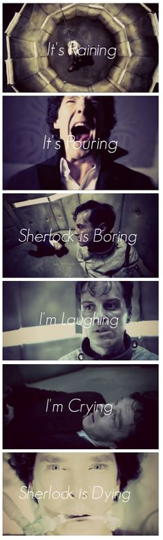 I probably recite this at least 10 times a day!! Sherlock. Moriarty. His Last Vow. Sherlock BBC. Sherlock.