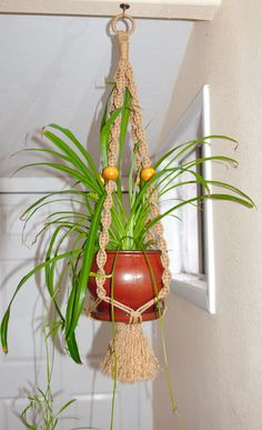 Macrame Plant hanger for Indoor/Outdoor by LudsHandicrafts on Etsy
