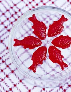 Swedish Fish Jello Shots - foodista.com