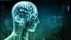 A térd fájdalom ellenszere: egyszerű filléres házi módszer! Chronischer Stress, Chronic Stress, Healthy Brain, Brain Health, Brain Food, Mental Health, Gut Brain, Healthy Mind, Healthy Weight