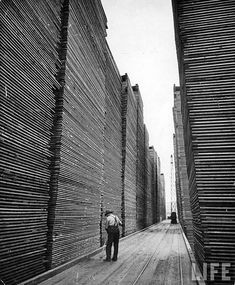 It's Friday night y'all! Make sure to sweep up before you go home! Another pic from Life magazine of the Seattle Cedar Lumber Manufacturing Co. Modern Photography, Street Photography, Cedar Lumber, Lumber Mill, Wattle And Daub, Timber Structure, Wood Architecture, Life Magazine, Great Pictures