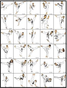 Martial arts and self defense: Martial arts and self defence techniques
