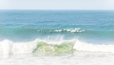 DOLPHIN SURFERS. Dolphin Print, Wildlife Photography, South Africa, Limited Edition, Photographic Print Art Prints For Sale, Art For Sale, Fine Art Prints, Surfers, Wildlife Photography, Dolphins, South Africa, Waves, Outdoor