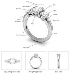 Know Your Ring Anatomy! - JANE