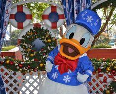 Donald duck citrus world