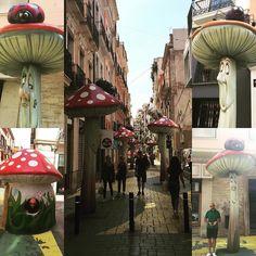 Mushroom Street! #Alicante #mushroomstreet