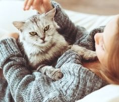 """There are things cats do that we may consider little """"blessings"""". Just wonderful little unexpected things that can make you smile. Here are some of our favorites."""