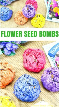 How to Make Seed Bombs, Seed Bombs Recipe, Flower Seed Bombs, Seed bombs are perfect to make for spring! You can use recycled paper which is great for the Earth and helping your environment. Gardening with Kids Ideas, children love to make DIY seed bombs, Nature Activity, Make Garden Seed Bombs with Kids, Earth Day Craft, Flower Activities, Nature Craft #garden #seedbombs #spring #kidsactivities #natureactivities #kidcrafts #naturecrafts #gardening