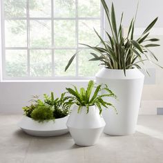 Explore west elm's collection of outdoor planters and terrariums. Dress up your garden or patio with our stylish outdoor collections. Modern Planters, Wood Planters, Outdoor Planters, Planter Pots, West Elm Planter, Planter Liners, Jardin Decor, White Ceramic Planter, Pot Plante