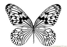 Butterfly Wings Coloring pages colouring adult detailed advanced printable Kleuren voor volwassenen coloriage pour adulte anti-stress kleurplaat voor volwassenen http://www.coloringpages101.com/printable_page/71717/beautifull-butterfly/butterfly