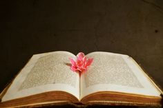 Setna strona - blog literacki: Światowy Dzień Książki - vintage zdjęcia książek