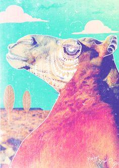 Abu Dhabi Arabian Camel Illustration