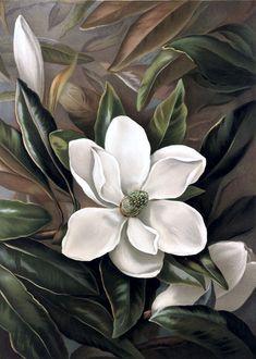 Pintura Magnolia, Magnolia Tattoo, Flower Art Images, Hope Art, Magnolia Flower, Arte Floral, Botanical Illustration, Botanical Prints, Beautiful Flowers