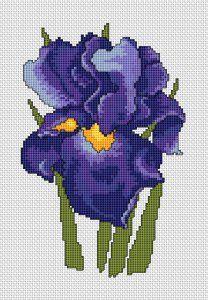Iris Flower, free cross stitch pattern from Alita Designs