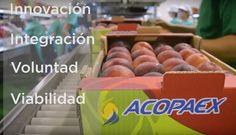 Vídeo para Acopaex. 25 años de cooperativismo