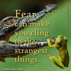 fear...