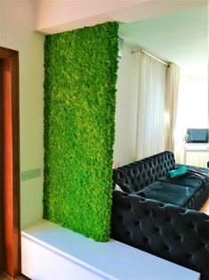 Licheni conservati apple green pentru o pata de culoare. Curtains, Interior Design, Green, Home Decor, Nest Design, Blinds, Decoration Home, Home Interior Design, Room Decor