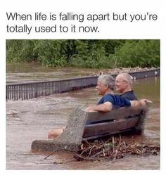 Really Funny Memes, Stupid Funny Memes, Funny Relatable Memes, Haha Funny, Funny Posts, Funny Cute, Funny Stuff, Funny Things, Random Stuff
